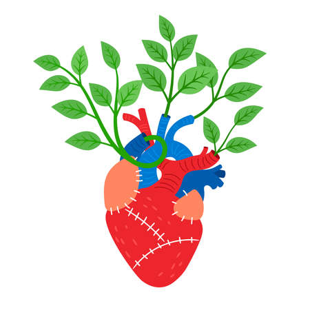 Human heart with leaves Vettoriali
