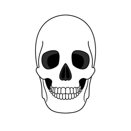 Decoration outline skull