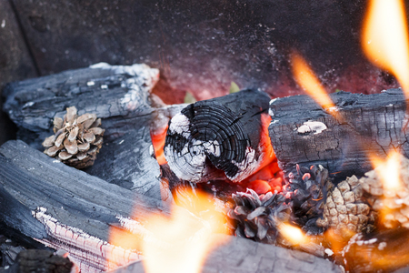 outdoor fireplace: fire in nature . Bonfire in the forest closeup