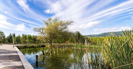 A little beautiful lake with wild ducks, in the park of Banyoles, Girona district, Catalonia, Spain Stock Photo