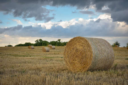 round haystack against the sky, harvesting