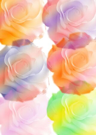 Abstract of roses created in .