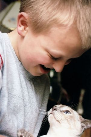 kindred: Siamese cat looking up at boy holding her.