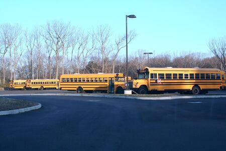School buses parked in a parking lot.