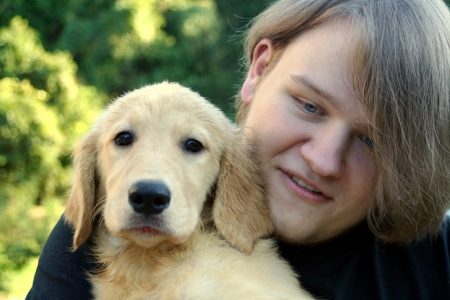adopting: Teen Boy And Golden Puppy 2 Stock Photo