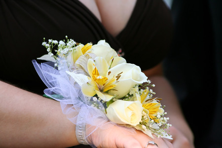 fashion  babies's wear: Corsage Side View