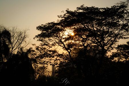 eos: Twilight sunrise Stock Photo