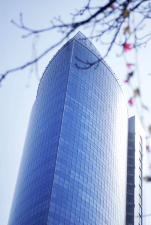 Modern skyscrapers close-up toned in blue color and spring flowering Stock Photo - 4637081