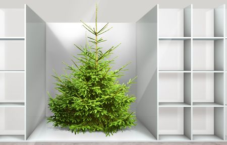 Christmas tree on the shelf in a department store Stock Photo - 5798674