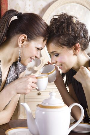 room mate: Two girl-friends talk and drink tea in drawing room