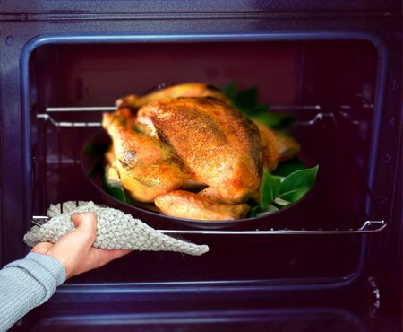roaster: appetizing roast chicken and potatoes in the oven Stock Photo