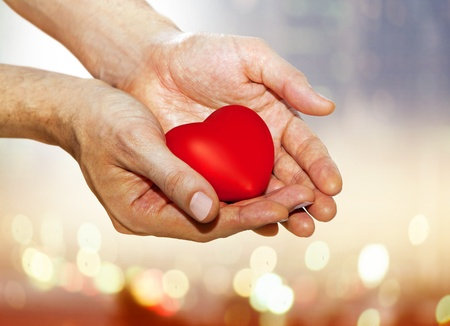 wooing: artificial red heart on hands of man