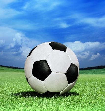 closeup soccer ball on green grass at sun day Standard-Bild
