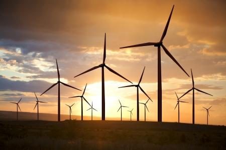 wind turbines generating electricity on sunset sky