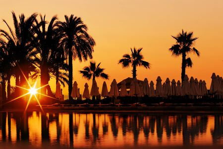 catchlight: Sunset and palms, beach in resort