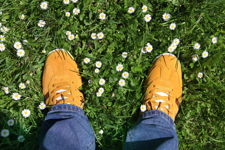 Part of legs in sports shoes on green grass around camomiles photo