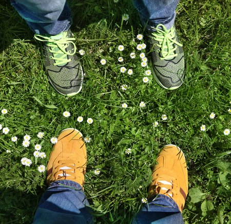 conveniences: Part of legs in sports shoes on green grass around camomiles