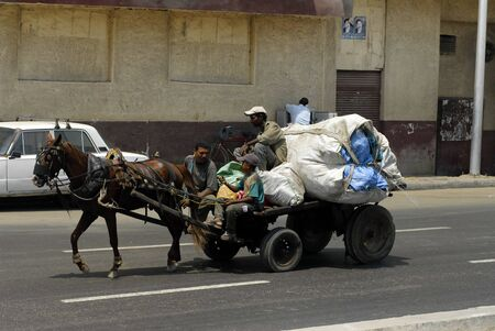CAIRO, EGYPT - AUGUST 3: Men transport garbage in the cart which is pulled by a horse on August 3, 2006 in Cairo. 新聞圖片
