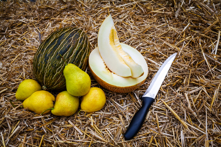 A whole and cut in half and sliced ripe melons lie on the straw, next to them a few yellow pears and a knife in stainless steel with a black handle.