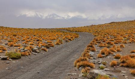 Bolivia, Eduardo Avaroa National Wildlife Refuge