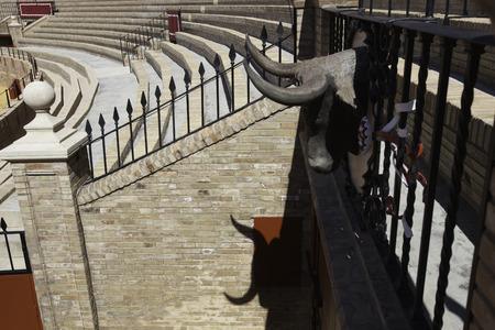 bull     s eye: Plaza de Toros, Seville, Spain