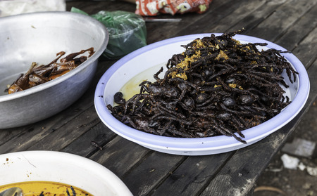 where to eat: Squn insect market, Where you can eat fried spiders, grasshoppers and chicken Stock Photo