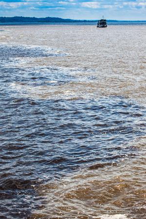 encounter: Blak and white white encounter, Amazogn River, Brazil