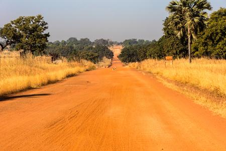 burkina faso: Dog crossing a red road in Burkina Faso Stock Photo