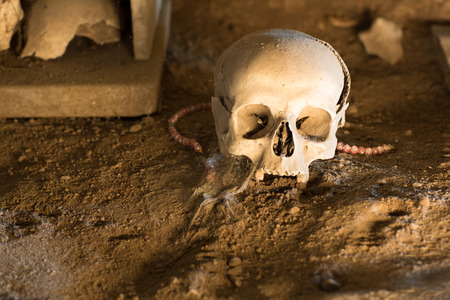 cholera: Ossuary in Naples in which are buried victims of plague and cholera Stock Photo
