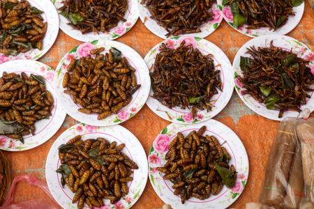 wasp larvae sold in market in Luang Prabang. Stock Photo