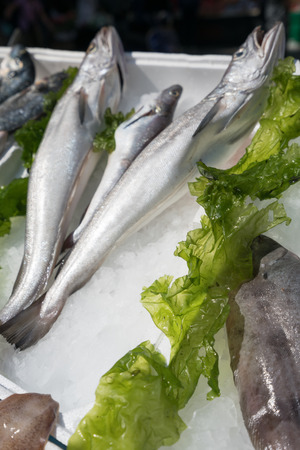 Fish exposed in open market Stock Photo