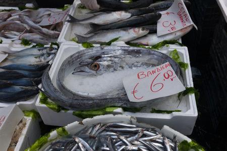 Mediterranean fish exposed in open seafood market