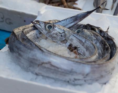 Mediterranean fish exposed in open market in Napoli