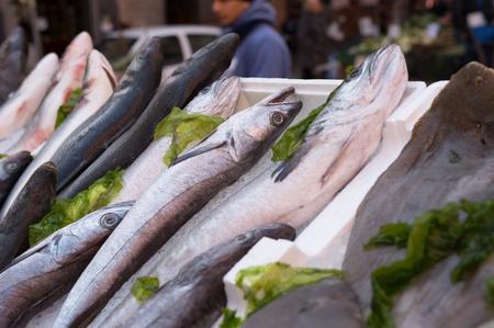 cods, mediterranean fish at market in Naples, Italy