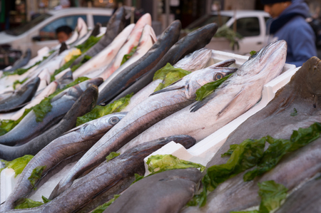 cods, mediterranean fish at market in Naples, Italy