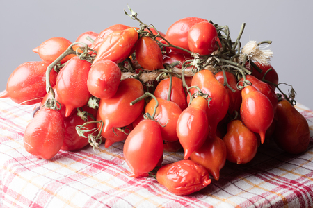 Tomatoes of Vesuvius joint in Piennolo, Naples