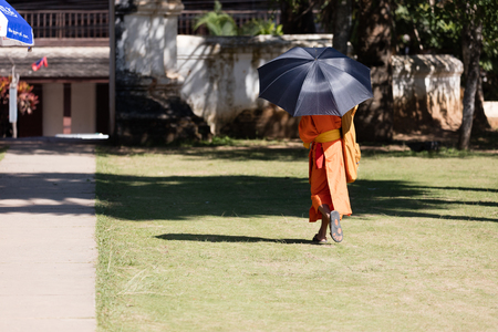 Young Buddhist monk in  monastery; Luang Prabang, Laos