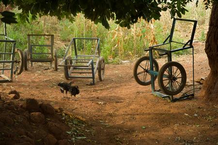 Chicken in caratheristic village in Burkina Faso Stock Photo