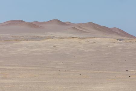 National reserve of Paracas,near Lima Peru
