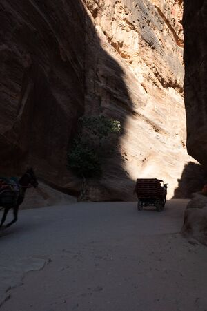 Canyon at the entrance in Petra, Jordan ancient city Stok Fotoğraf