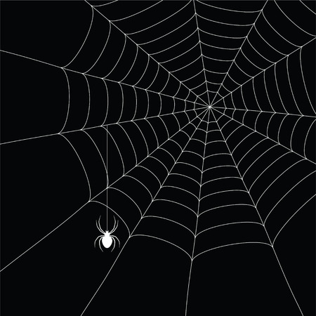 web2: white  spider and spider web isolated on the  black background Illustration