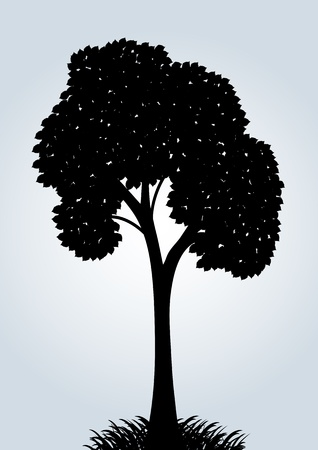 Silhouette of a vector tree on a blue background Vector