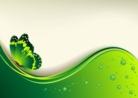 Beautiful green background with the butterfly and dew drops