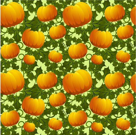 gourds: Seamless background with pumpkins in orange color