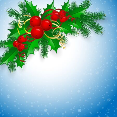 ilex: Vector Christmas holly with berries. eps10 illustration