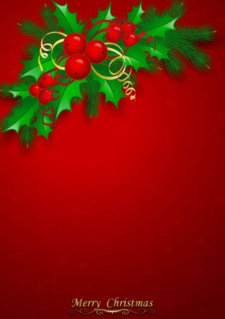 aquifolium: Vector Christmas holly with berries. eps10 illustration