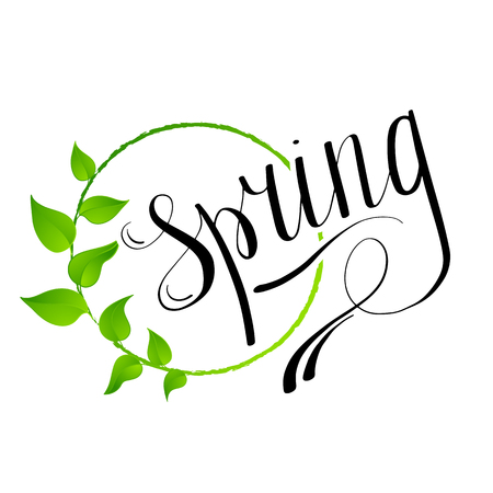 green plants: Hello Spring abstract background. Design element with green leaves