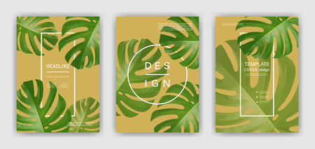 Background with tropical palm leaves. Exotic tropical plants. Illustration of jungle nature.