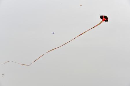 paper kites: Big kites in the sky