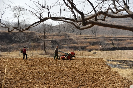 preparations: Farmers preparations for Plowing